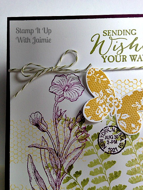Butterfly Basics - Stampin Up - Stamp it Up With Jaimie