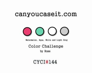 cyci144-300x240