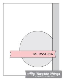 mft_wsc_316