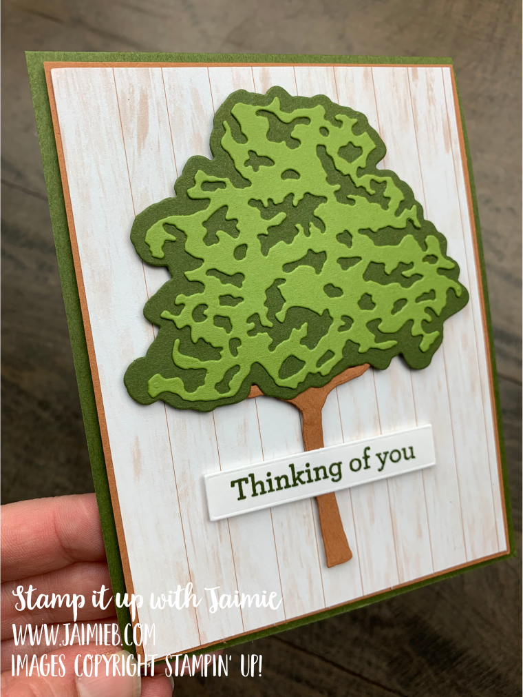 Stampin Up Beauty of Friendship Masculine Card
